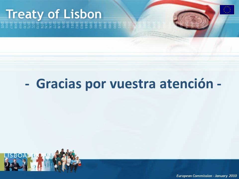 European Commission - January 2010 - Gracias por vuestra atención -