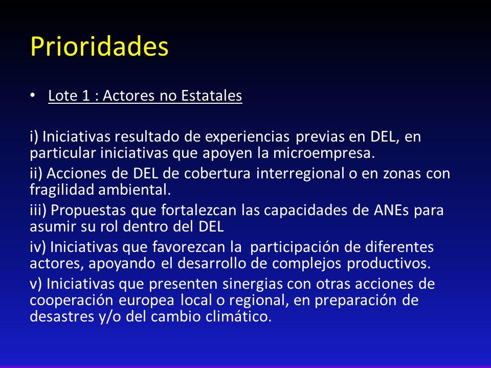 Prioridades Lote 1 : Actores no Estatales i) Iniciativas resultado de experiencias previas en DEL, en particular iniciativas que apoyen la microempres