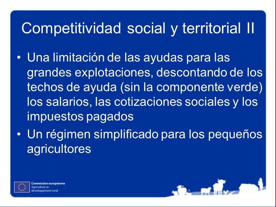Competitividad social y territorial II Una limitación de las ayudas para las grandes explotaciones, descontando de los techos de ayuda (sin la compone