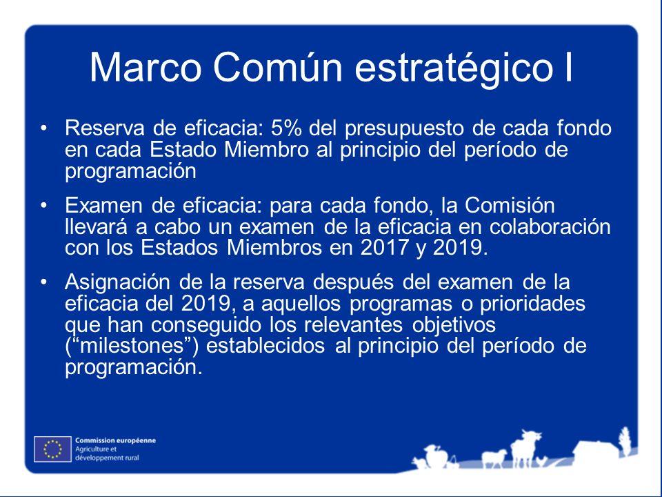 Marco Común estratégico I Reserva de eficacia: 5% del presupuesto de cada fondo en cada Estado Miembro al principio del período de programación Examen