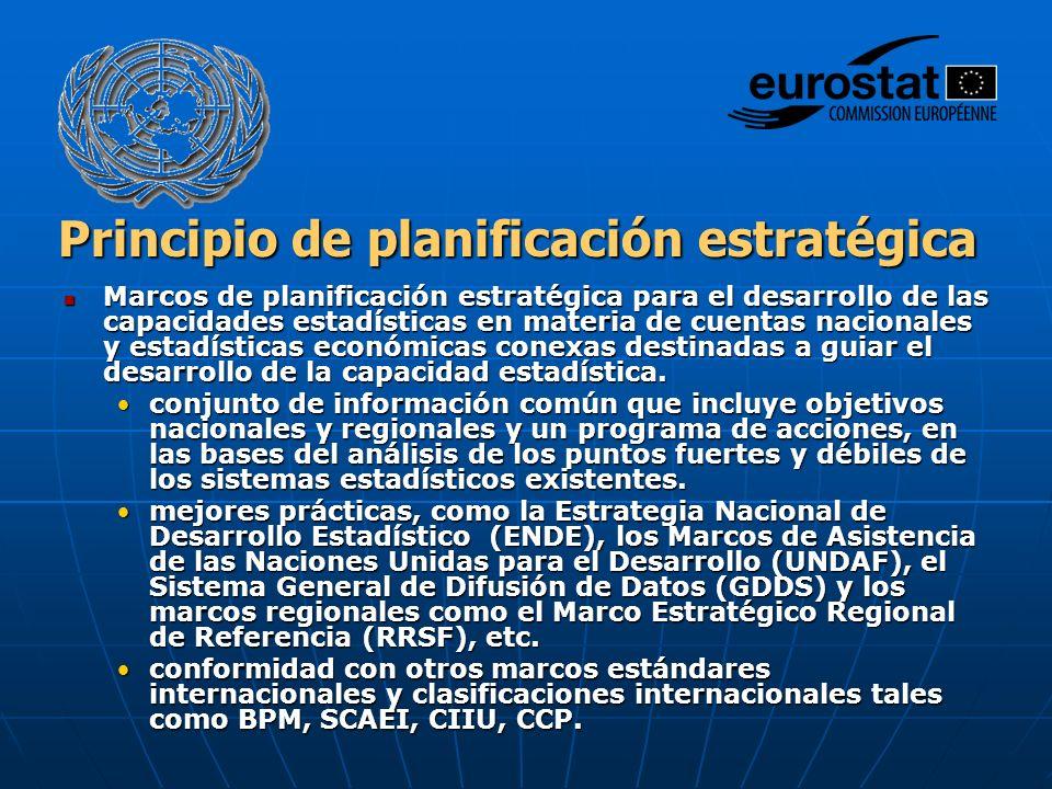 Principio de planificación estratégica Marcos de planificación estratégica para el desarrollo de las capacidades estadísticas en materia de cuentas nacionales y estadísticas económicas conexas destinadas a guiar el desarrollo de la capacidad estadística.