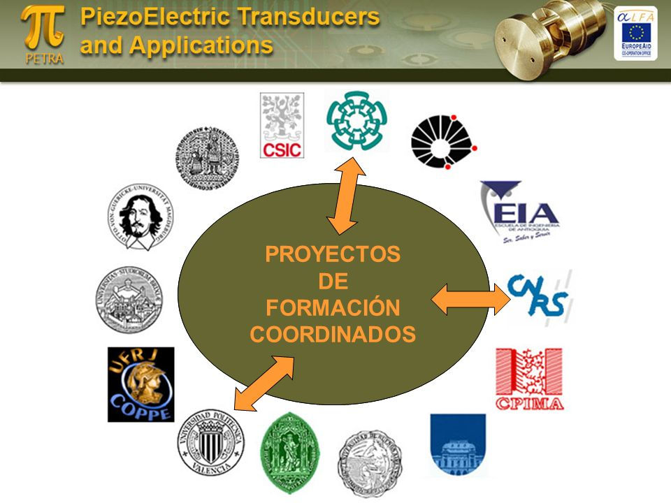 CENTRO VIRTUAL DE FORMACION AL/EU Formación Doctoral Doctorados Conjuntos Formación de investigadores PROYECTOS DE FORMACIÓN COORDINADOS