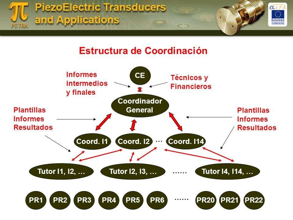 Estructura de Coordinación CE Coordinador General Coord.