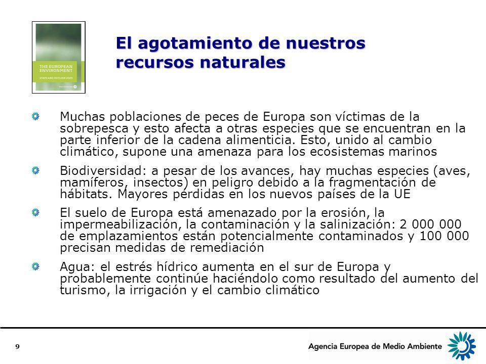 9 El agotamiento de nuestros recursos naturales Muchas poblaciones de peces de Europa son víctimas de la sobrepesca y esto afecta a otras especies que se encuentran en la parte inferior de la cadena alimenticia.