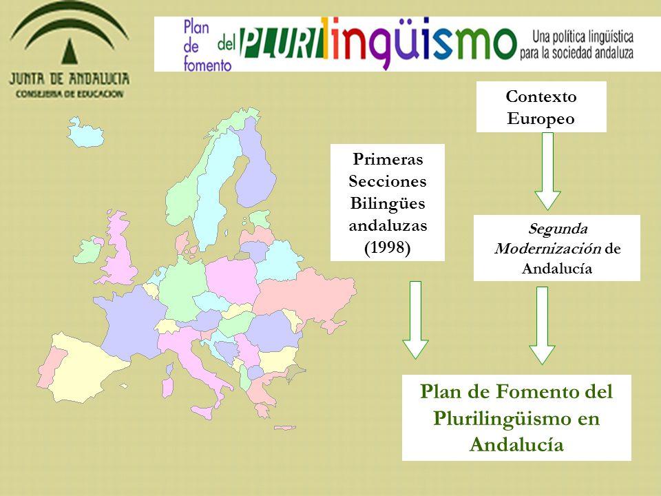 El Plan propone una nueva política lingüística para Andalucía, partiendo de los principios que emanan del Consejo de Europa que asegura las competencias plurilingües y multiculturales de los andaluces y que responde a los nuevos desafíos económicos, tecnológicos y sociales, a través de un curriculum integrado para todas las lenguas.