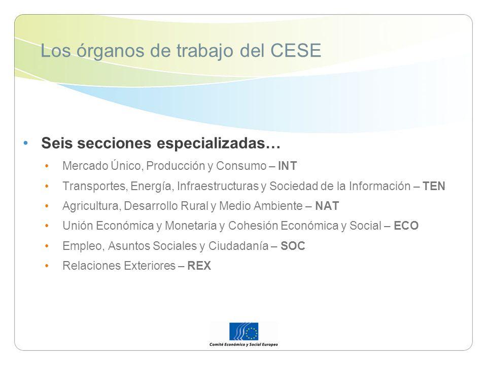 Los órganos de trabajo del CESE Seis secciones especializadas… Mercado Único, Producción y Consumo – INT Transportes, Energía, Infraestructuras y Soci