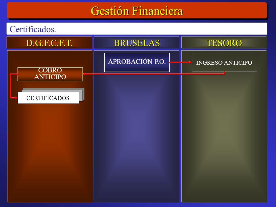 D.G.F.C.F.T.BRUSELASTESORO Gestión Financiera Certificados.