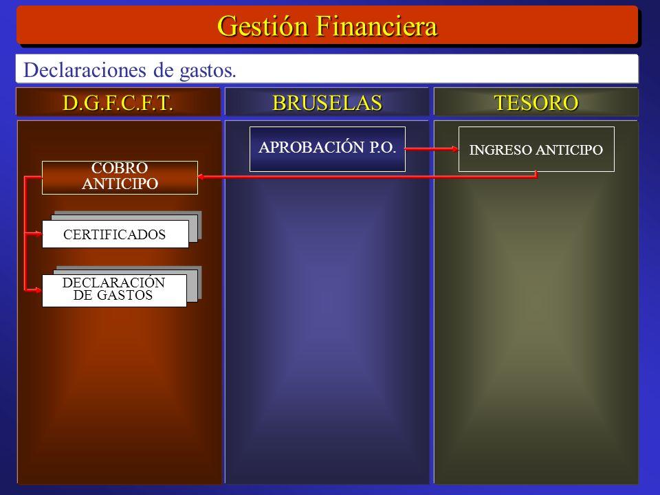 D.G.F.C.F.T.BRUSELASTESORO Gestión Financiera Declaraciones de gastos.