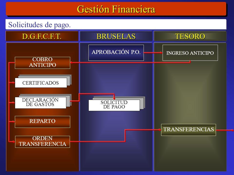 D.G.F.C.F.T.BRUSELASTESORO Gestión Financiera Solicitudes de pago.