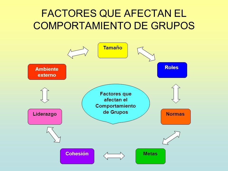 FACTORES QUE AFECTAN EL COMPORTAMIENTO DE GRUPOS Factores que afectan el Comportamiento de Grupos Tamaño Roles Normas MetasCohesión Liderazgo Ambiente