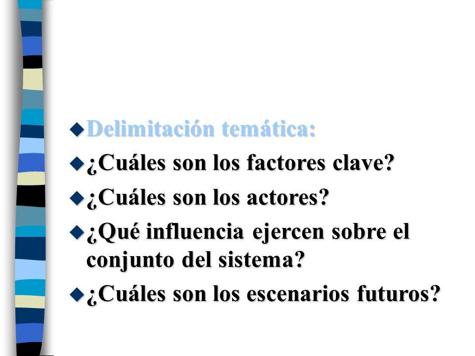u Delimitación temática: u ¿Cuáles son los factores clave? u ¿Cuáles son los actores? u ¿Qué influencia ejercen sobre el conjunto del sistema? u ¿Cuál