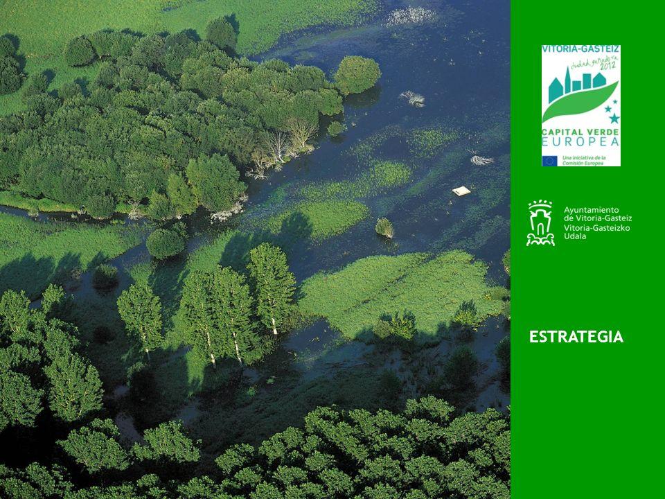 Estrategia 2012: año vital para iniciar el tránsito hacia una economía más verde y baja en carbono Cumbre de Río+20.