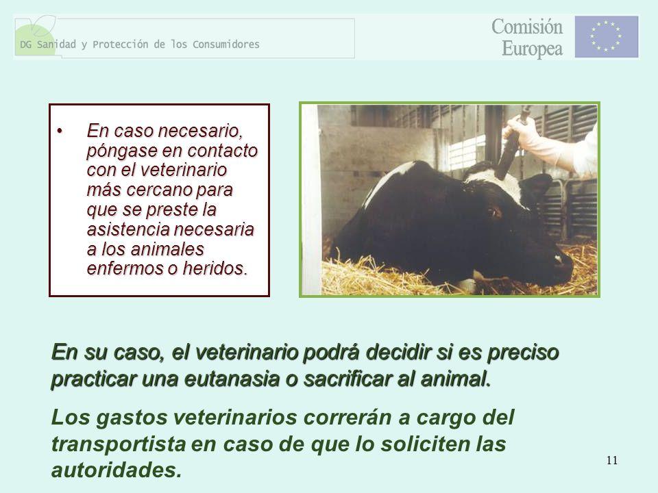 11 En caso necesario, póngase en contacto con el veterinario más cercano para que se preste la asistencia necesaria a los animales enfermos o heridos.