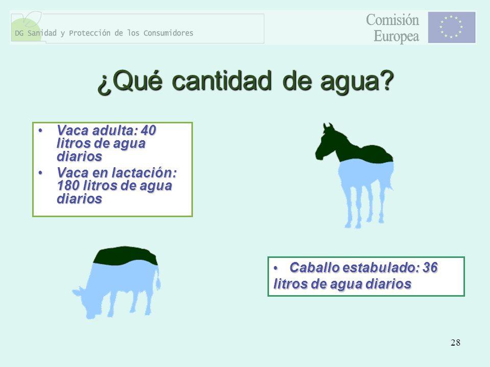 28 Vaca adulta: 40 litros de agua diariosVaca adulta: 40 litros de agua diarios Vaca en lactación: 180 litros de agua diariosVaca en lactación: 180 li