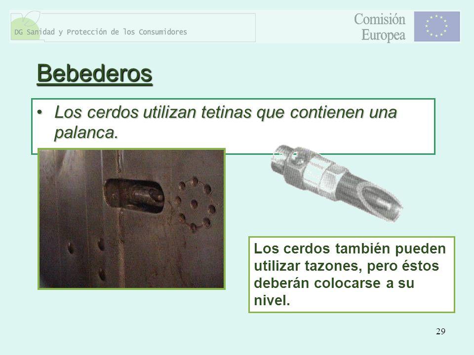 29 Bebederos Los cerdos utilizan tetinas que contienen una palanca.Los cerdos utilizan tetinas que contienen una palanca. Los cerdos también pueden ut