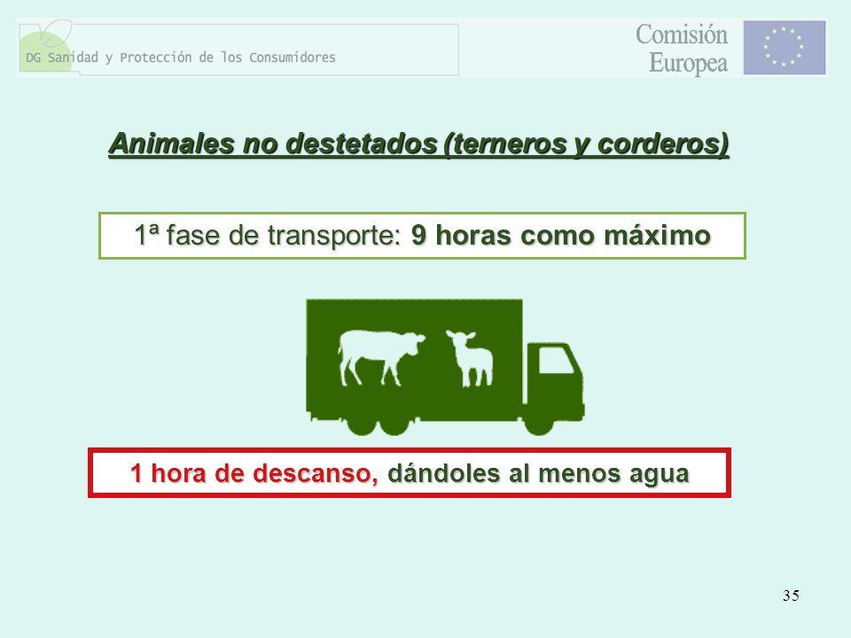 35 Animales no destetados (terneros y corderos) 1ª fase de transporte: 9 horas como máximo 1 hora de descanso, dándoles al menos agua