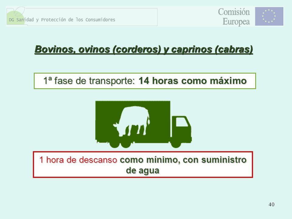 40 Bovinos, ovinos (corderos) y caprinos (cabras) 1ª fase de transporte: 14 horas como máximo 1 hora de descanso como mínimo, con suministro de agua