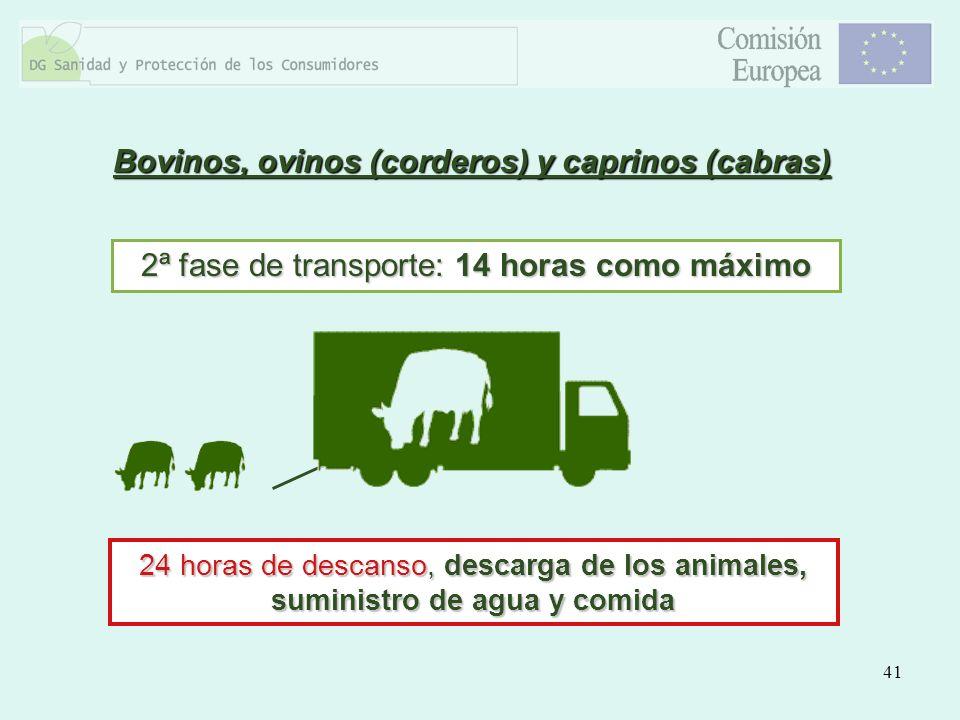 41 2ª fase de transporte: 14 horas como máximo 24 horas de descanso, descarga de los animales, suministro de agua y comida Bovinos, ovinos (corderos)