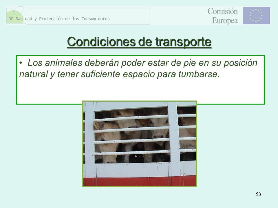 53 Los animales deberán poder estar de pie en su posición natural y tener suficiente espacio para tumbarse. Condiciones de transporte