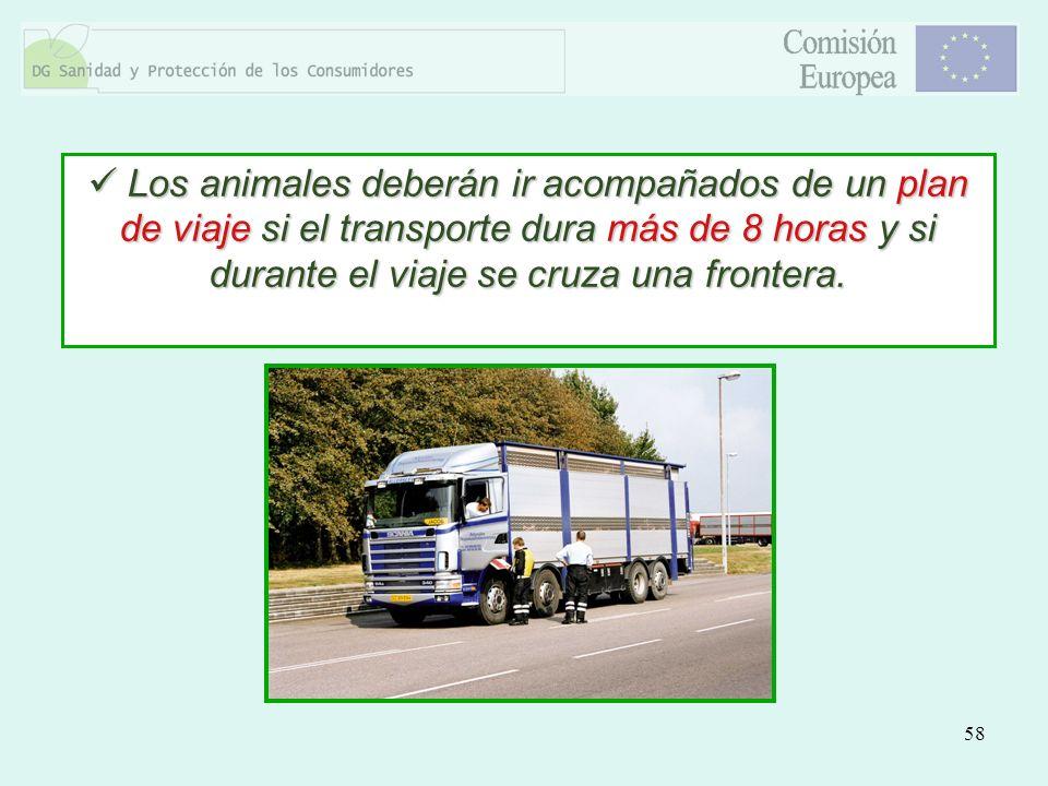 58 Los animales deberán ir acompañados de un plan de viaje si el transporte dura más de 8 horas y si durante el viaje se cruza una frontera. Los anima