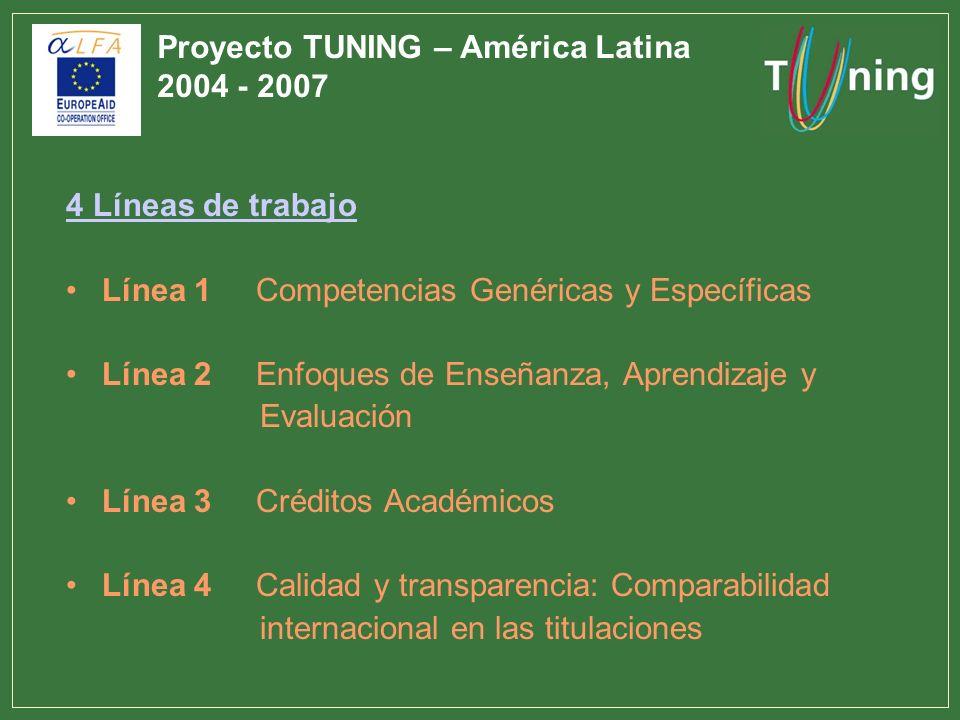 4 Líneas de trabajo Línea 1 Competencias Genéricas y Específicas Línea 2 Enfoques de Enseñanza, Aprendizaje y Evaluación Línea 3 Créditos Académicos L