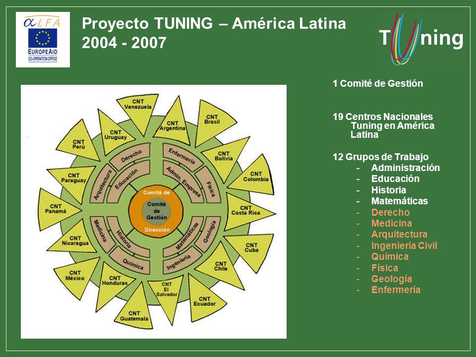 1 Comité de Gestión 19 Centros Nacionales Tuning en América Latina 12 Grupos de Trabajo -Administración -Educación -Historia -Matemáticas -Derecho -Me
