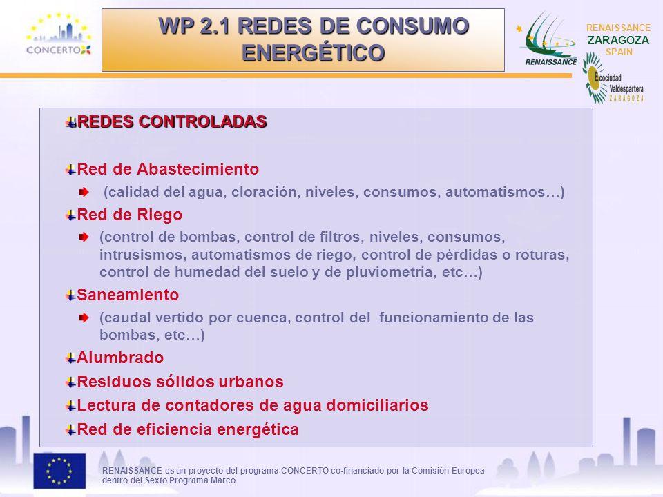 RENAISSANCE es un proyecto del programa CONCERTO co-financiado por la Comisión Europea dentro del Sexto Programa Marco RENAISSANCE ZARAGOZA SPAIN REDE