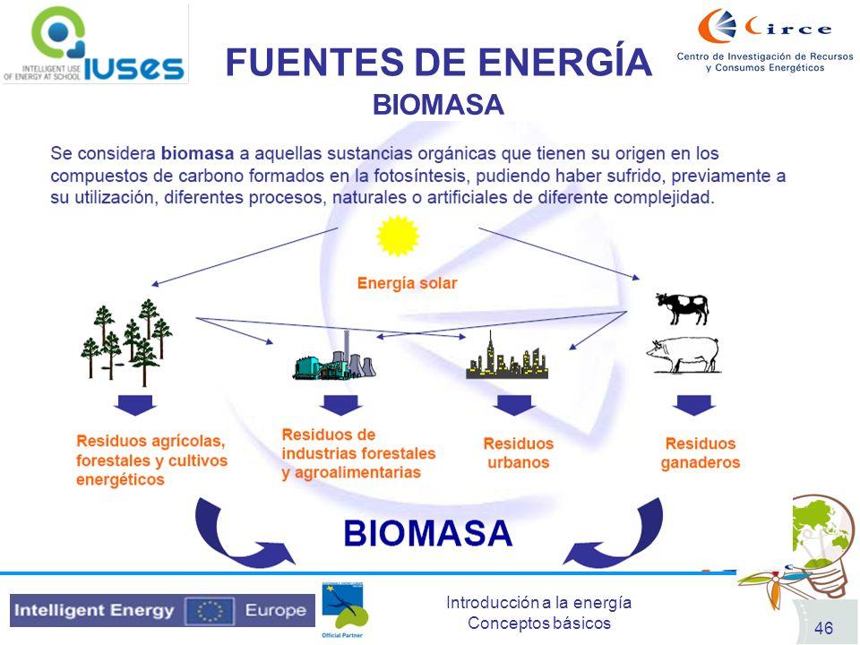 Introducción a la energía Conceptos básicos 46 FUENTES DE ENERGÍA BIOMASA