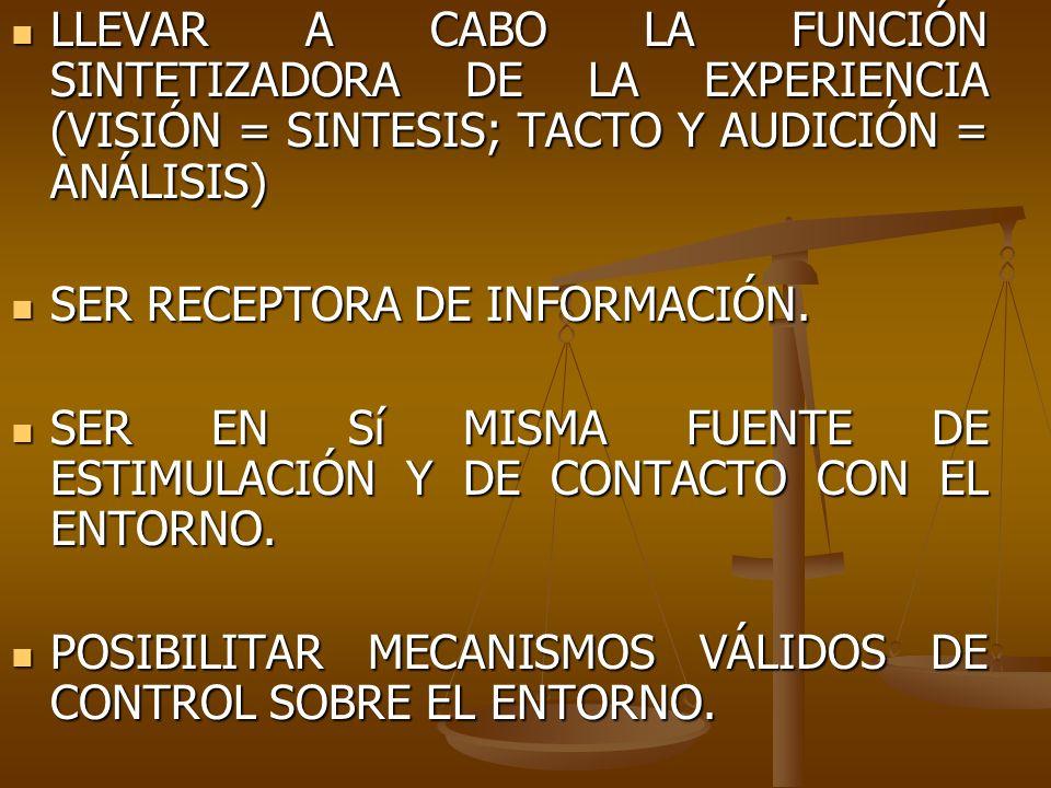 LLEVAR A CABO LA FUNCIÓN SINTETIZADORA DE LA EXPERIENCIA (VISIÓN = SINTESIS; TACTO Y AUDICIÓN = ANÁLISIS) LLEVAR A CABO LA FUNCIÓN SINTETIZADORA DE LA