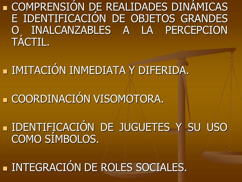 COMPRENSIÓN DE REALIDADES DINÁMICAS E IDENTIFICACIÓN DE OBJETOS GRANDES O INALCANZABLES A LA PERCEPCION TÁCTIL. COMPRENSIÓN DE REALIDADES DINÁMICAS E