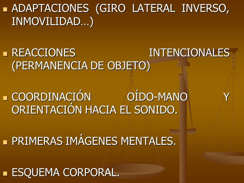 ADAPTACIONES (GIRO LATERAL INVERSO, INMOVILIDAD…) ADAPTACIONES (GIRO LATERAL INVERSO, INMOVILIDAD…) REACCIONES INTENCIONALES (PERMANENCIA DE OBJETO) R