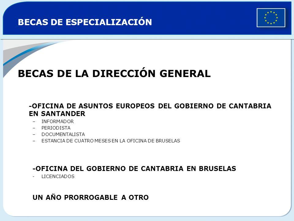 BECAS DE ESPECIALIZACIÓN BECAS DE LA DIRECCIÓN GENERAL -OFICINA DE ASUNTOS EUROPEOS DEL GOBIERNO DE CANTABRIA EN SANTANDER –INFORMADOR –PERIODISTA –DO