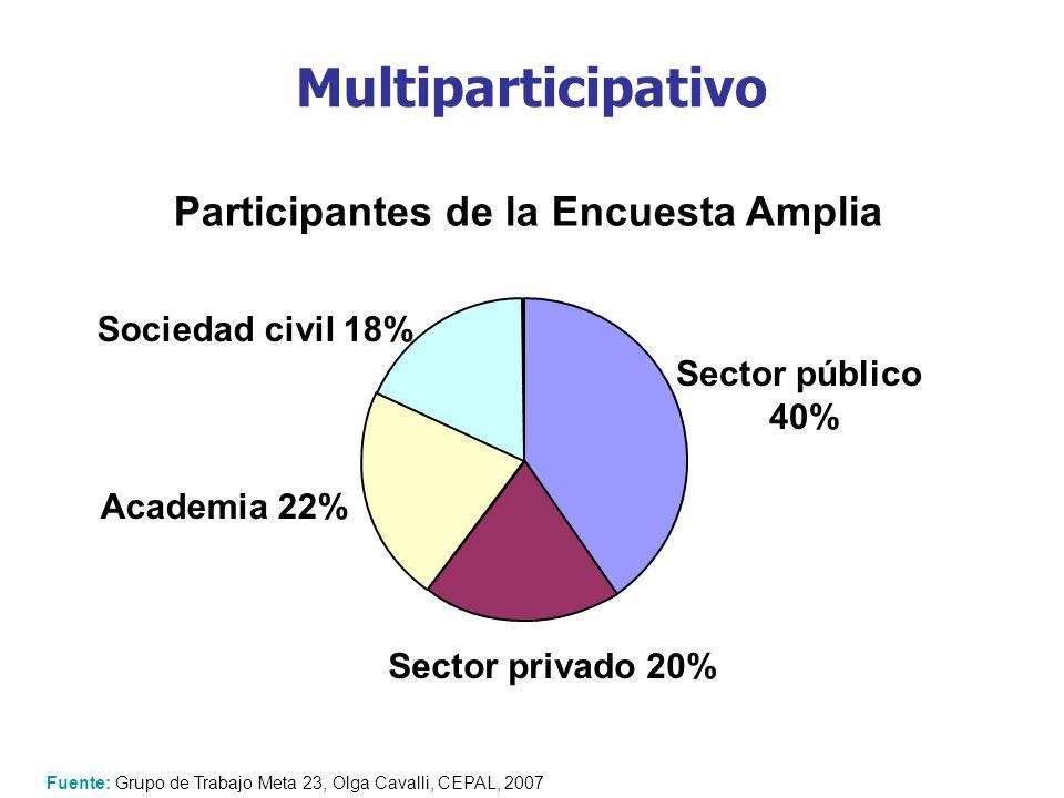 Multiparticipativo Fuente: Grupo de Trabajo Meta 23, Olga Cavalli, CEPAL, 2007 Sector público 40% Sector privado 20% Sociedad civil 18% Academia 22% P