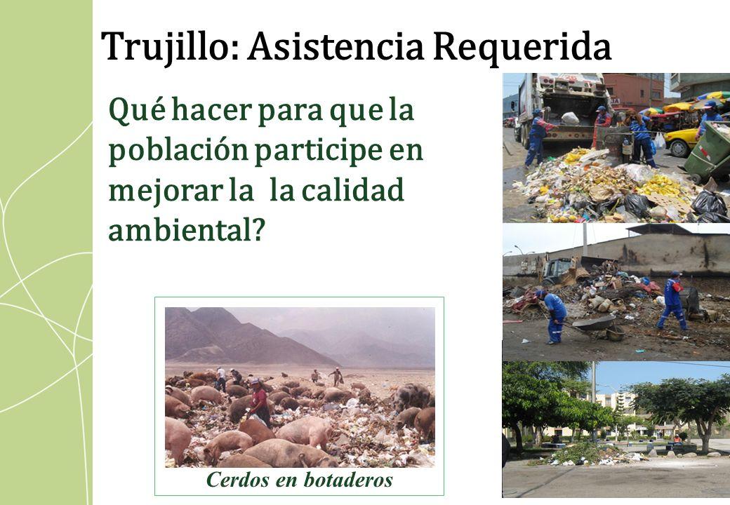 Qué hacer para que la población participe en mejorar la la calidad ambiental? Cerdos en botaderos Trujillo: Asistencia Requerida