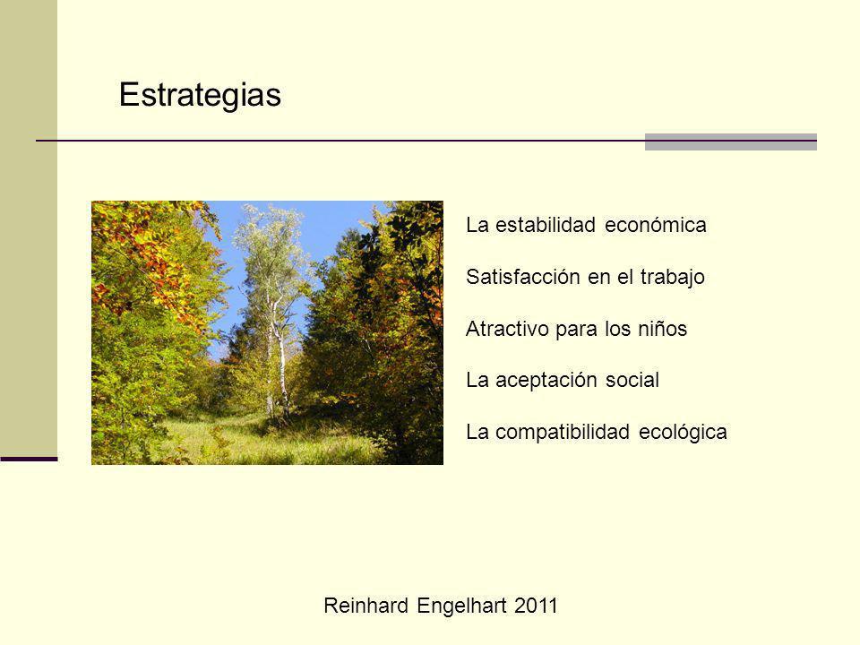 Reinhard Engelhart 2011 Estrategias La estabilidad económica Satisfacción en el trabajo Atractivo para los niños La aceptación social La compatibilidad ecológica