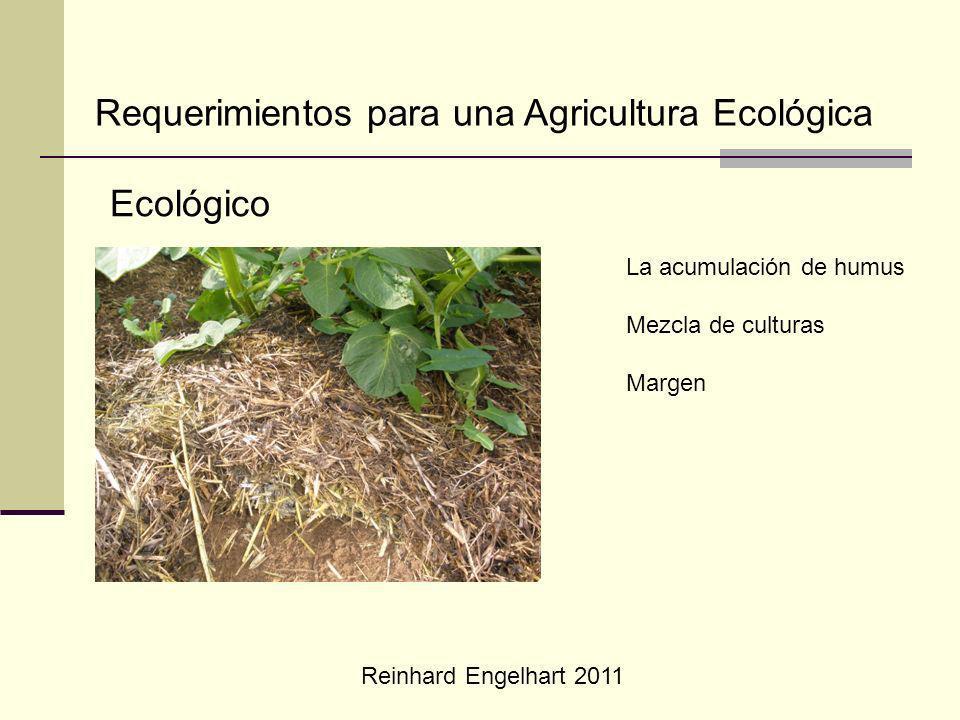 Reinhard Engelhart 2011 Requerimientos para una Agricultura Ecológica Ecológico La acumulación de humus Mezcla de culturas Margen