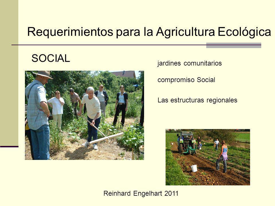 Reinhard Engelhart 2011 Requerimientos para la Agricultura Ecológica SOCIAL jardines comunitarios compromiso Social Las estructuras regionales
