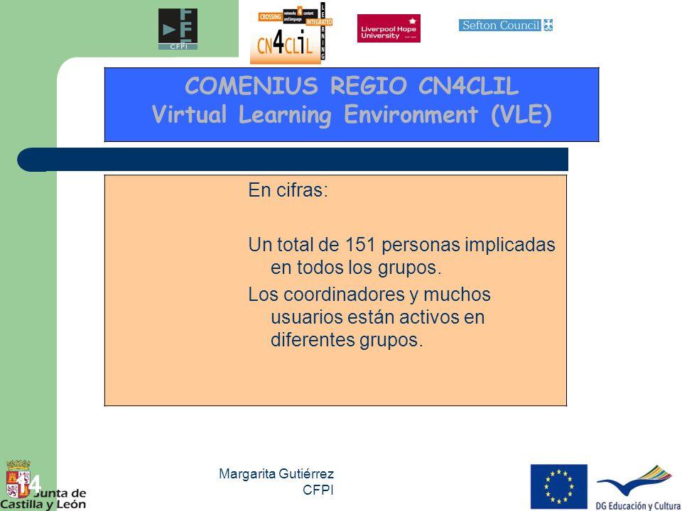 Margarita Gutiérrez CFPI 14 En cifras: Un total de 151 personas implicadas en todos los grupos. Los coordinadores y muchos usuarios están activos en d