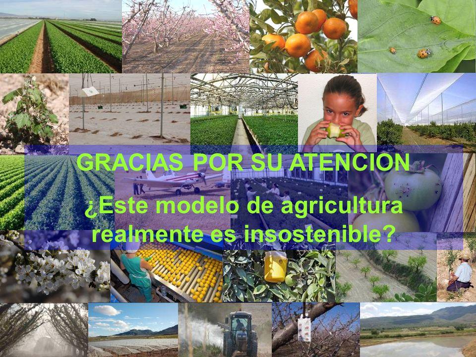 GRACIAS POR SU ATENCION ¿Este modelo de agricultura realmente es insostenible?