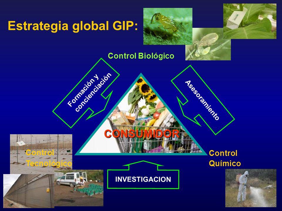 Estrategia global GIP: Control Biológico Control Químico Control Tecnológico INVESTIGACION Asesoramiento CONSUMIDOR Formación y concienciación