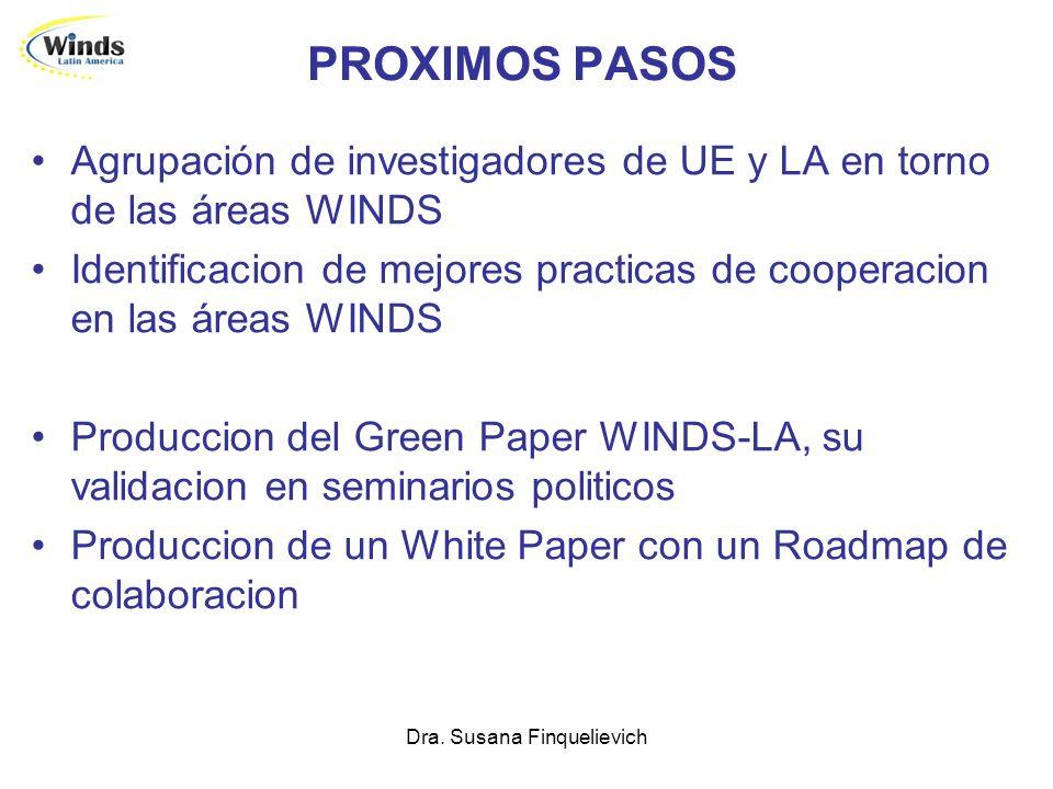 Dra. Susana Finquelievich PROXIMOS PASOS Agrupación de investigadores de UE y LA en torno de las áreas WINDS Identificacion de mejores practicas de co