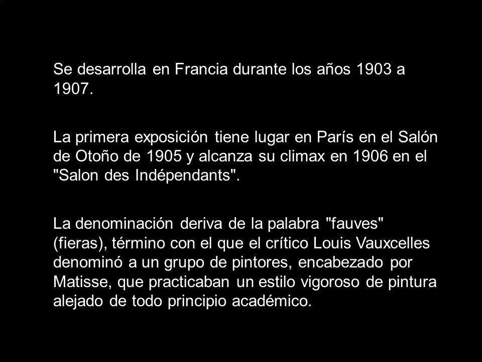 Se desarrolla en Francia durante los años 1903 a 1907. La primera exposición tiene lugar en París en el Salón de Otoño de 1905 y alcanza su climax en
