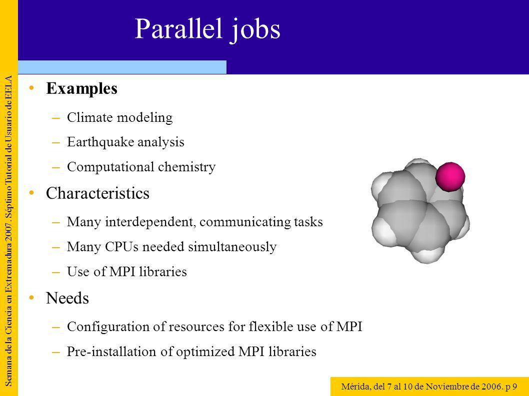 Parallel jobs Examples –Climate modeling –Earthquake analysis –Computational chemistry Characteristics –Many interdependent, communicating tasks –Many CPUs needed simultaneously –Use of MPI libraries Needs –Configuration of resources for flexible use of MPI –Pre-installation of optimized MPI libraries Semana de la Ciencia en Extremadura 2007.