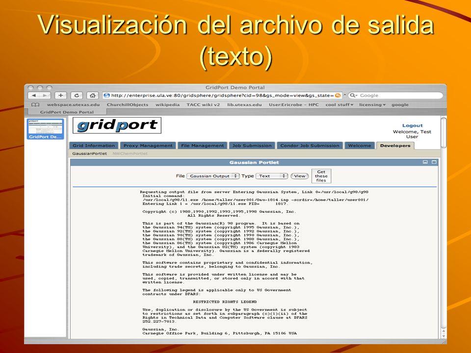 Visualización del archivo de salida (texto)