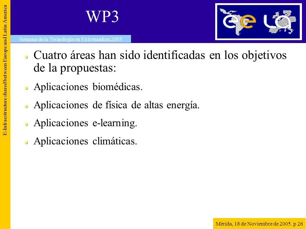 WP3 Cuatro áreas han sido identificadas en los objetivos de la propuestas: Aplicaciones biomédicas.