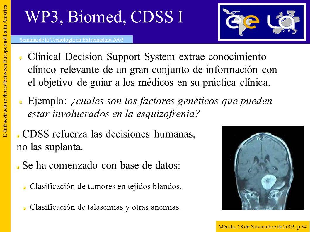 WP3, Biomed, CDSS I E-Infraestructure shared between Europe and Latin America Semana de la Tecnología en Extremadura 2005 Mérida, 18 de Noviembre de 2