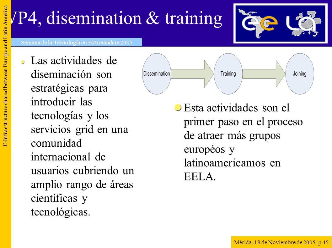 WP4, disemination & training Las actividades de diseminación son estratégicas para introducir las tecnologías y los servicios grid en una comunidad internacional de usuarios cubriendo un amplio rango de áreas científicas y tecnológicas.