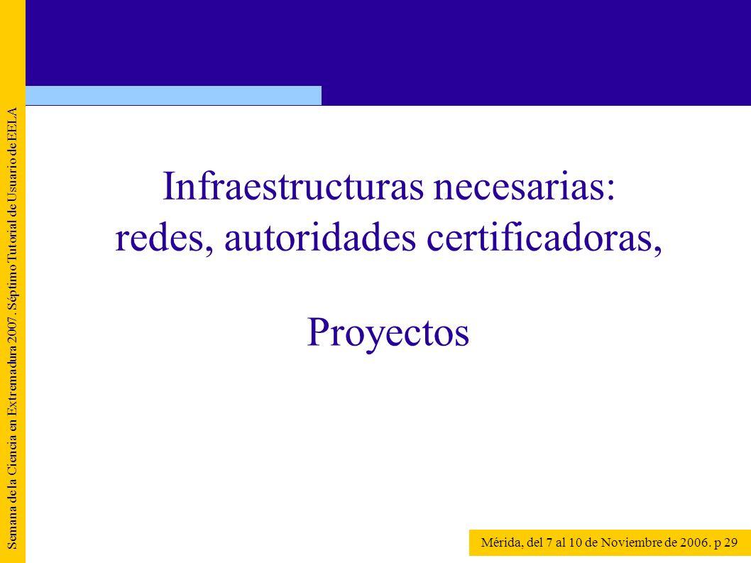 Semana de la Ciencia en Extremadura 2007. Séptimo Tutorial de Usuario de EELA Mérida, del 7 al 10 de Noviembre de 2006. p 29 Proyectos Infraestructura