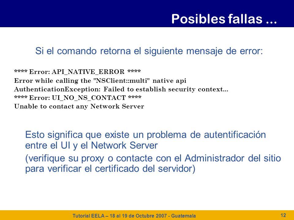 Tutorial EELA – 18 al 19 de Octubre 2007 - Guatemala 12 Si el comando retorna el siguiente mensaje de error: **** Error: API_NATIVE_ERROR **** Error w