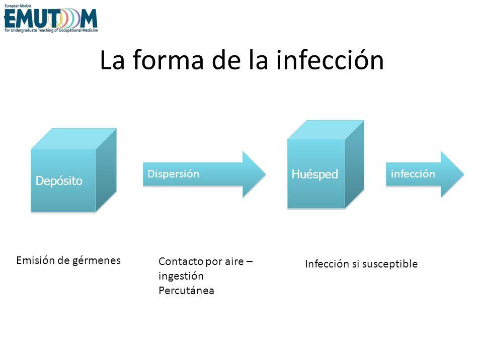 La forma de la infección Emisión de gérmenes Contacto por aire – ingestión Percutánea Infección si susceptible Depósito Huésped Dispersión infección